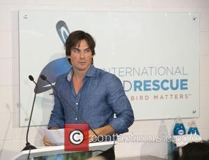 Ian Somerhalder - Animal activist actor Ian Somerhalder of