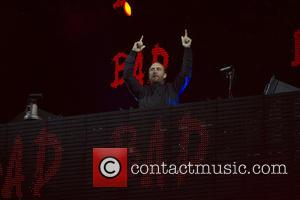 David Guetta Dumps Horse Stunt