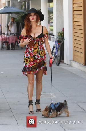 Phoebe Price - Phoebe Price takes her dog Henry for a walk in Beverly Hills - Los Angeles, California, United...