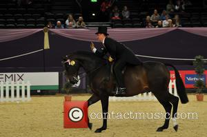 Brereton Small Hack of The Year - Horse of the Year Show 2015 - Day 2 at Genting Arena -...