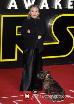 Carrie Fisher's Final Tv Role Will Be A 'Fitting Tribute'