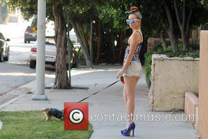 Phoebe Price - Phoebe Price wearing a waist trainer and a see-thru bra while walking her dog - Los Angeles,...