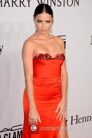 Model Adriana Lima's Divorce Finalised