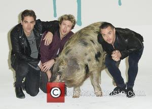 Charlie Simpson, Matt Willis, James Bourne and Sandy The Pig