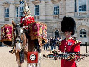 Guards and A Military Drum Horse