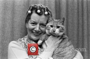 Coronation Street's Jean Alexander (Hilda Ogden) with the Street's cat. November 1980. - United Kingdom - Saturday 15th October 2016