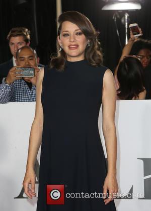 Marion Cotillard Didn't Take Brad Pitt Rumours 'Personally'