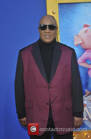 Stevie Wonder Hit With Tax Lien