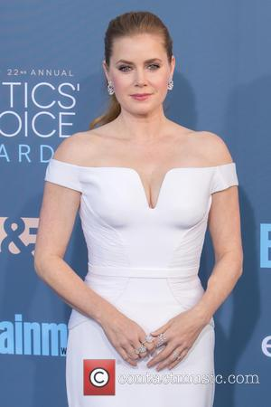 Amy Adams 'Overwhelmed' By Awards Season