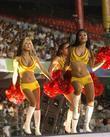 DLF IPL cricket match between Kolkata Knight Riders