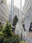 Holiday Tree At Rockefeller Center
