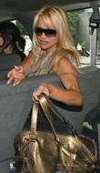 Pamela Anderson, ABC