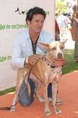 David Gianopoulous Walk for the Underdog charity supporting...