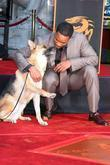 with the dog who co-starred in 'I Am Legend'