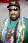 Afrika Bambaataa 4th Annual Afro-Punk Festival held at...