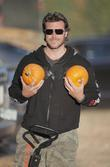 Guest at Pumpkin Patch in West Hollywood California,...