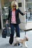 Kelly Ripa, ABC, Abc Studios