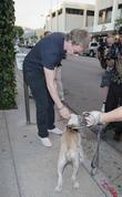 Patrick Kielty meets a Boxer dog called 'London' as he leaves the Ivy restaurant