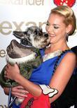 Katherine Heigl and Her Dog Romeo