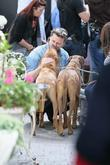 Dean McDermott meets two dogs as he films...
