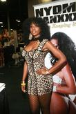 Nyomi Banxxx 2011 EXXXOTICA Expo Held at the...