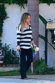 Hilary Duff pregnant actress cutting down roses while...