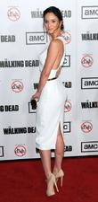 Sarah Wayne Callies and Lori Grimes