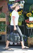 Ali Larter goes shopping for groceries at Whole...