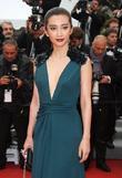 Li Bingbing and Cannes Film Festival