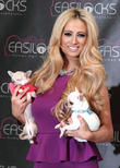 Chantelle Houghton, Easilocks, Worx Studios