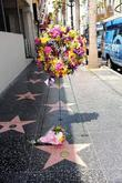 donna summer dead at 63 queen of disco donna summe