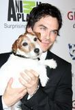 Ian Somerhalder and Beverly Hilton Hotel