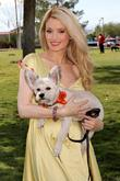 Holly Madison, with Rosco makes an appearance at...