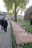 Veterans, Field, Remembrance and Westminster Abbey