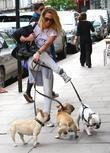 Sarah Harding struggles to walk her three dogs...