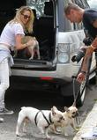 Sarah Harding packs her dogs in the back...