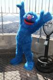 Grover and Madison Square Garden