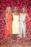 Erin Heatherton and Victoria's Secret