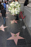 Flowers, Ray Harryhausen's Hollywood Walk and Fame