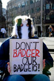 Birmingham and Badger Cull Protest