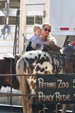Elizabeth Berkley Takes Son For a Pony Ride