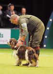 Crufts and Day