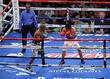 Timothy Bradley, Manny Pacquiao, MGM Grand Garden Arena
