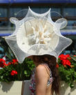 Royal Ascot, Atmosphere, Celebrity Sightings and Day