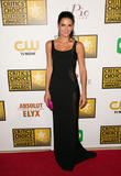 Angie Harmon, The Beverly Hilton Hotel, Beverly Hilton Hotel