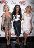 Dawn Richard Speaks Out About Fight With Danity Kane Bandmate