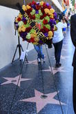 Joan Rivers, Walk of Fame