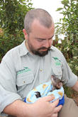 Orphaned Joey Gets Surrogate and Dad