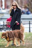 Amanda Seyfried Replaces Maslany In Neil Labute Play
