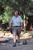 Orphaned Wombat Continues Walk and Towards The Wild